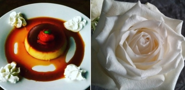 Creme and flower
