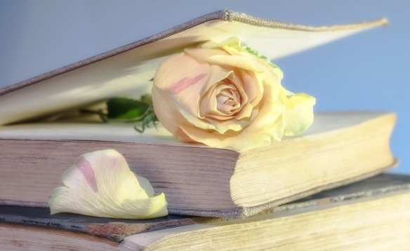 Bible flower PIC